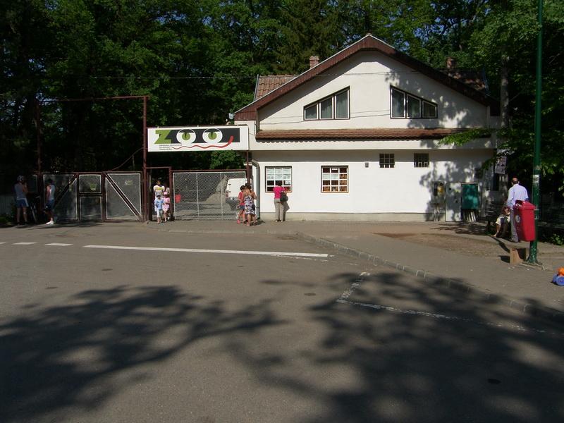 Vizualizati imaginile din articolul: Un transport de animale de la Zoo Budapesta este aşteptat la Zoo Tîrgu-Mureş
