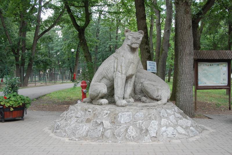 Vizualizati imaginile din articolul: 50 de ani de Zoo Tîrgu-Mures. Sâmbătă intrarea este liberă.