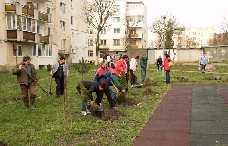 Vizualizati imaginile din articolul: A polgármesteri hivatal egy széleskörű faültetési akciót tervez Marosvásárhely több oktatási intézményében