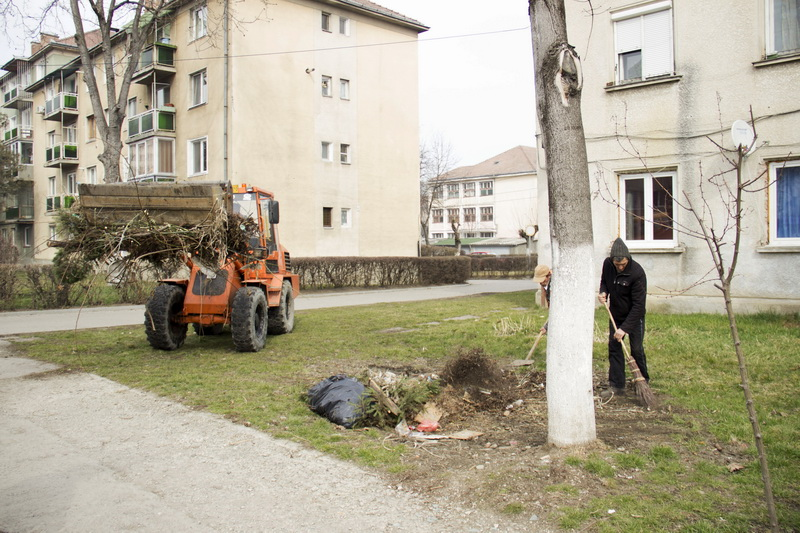 Vizualizati imaginile din articolul: Elkezdődött a tavaszi nagytakarítás