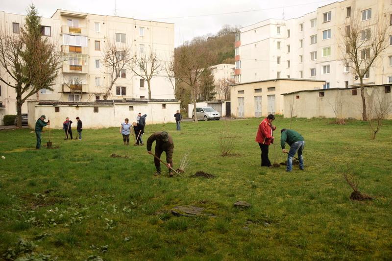 Vizualizati imaginile din articolul: A Marosvásárhelyi Polgármesteri Hivatalt foglalkoztatja a város zöldövezeteinek sokszínűsítése és konzerválása