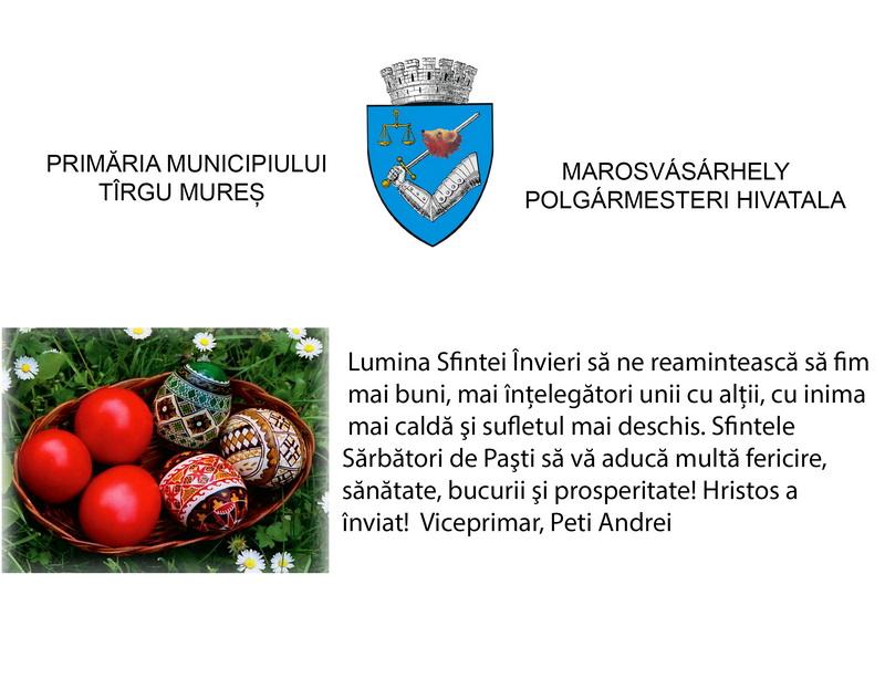 Vizualizati imaginile din articolul: Urare viceprimar Peti Andrei