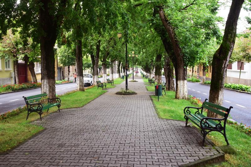 Vizualizati imaginile din articolul: Confort în ...'Oraşul florilor'