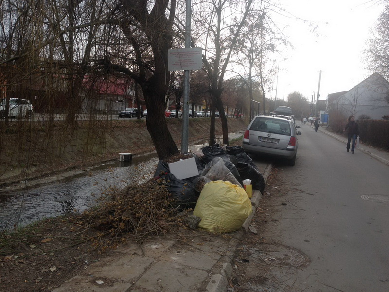 Vizualizati imaginile din articolul: Apel către cetăţeni: Nu mai aruncaţi resturi vegetale la întâmplare!