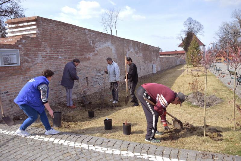 Vizualizati imaginile din articolul: Soseşte primăvara… şi în Cetatea Tîrgu Mureş