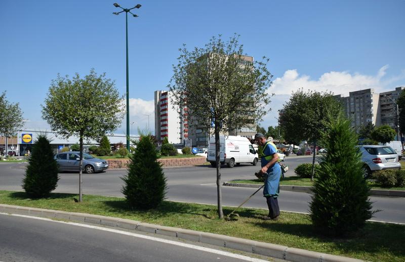 Vizualizati imaginile din articolul: Echipele Serelor primăriei înfrumuseţează oraşul !