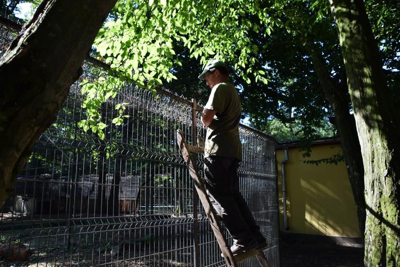 Vizualizati imaginile din articolul: Grădina Zoo aşteaptă… vizitatori!