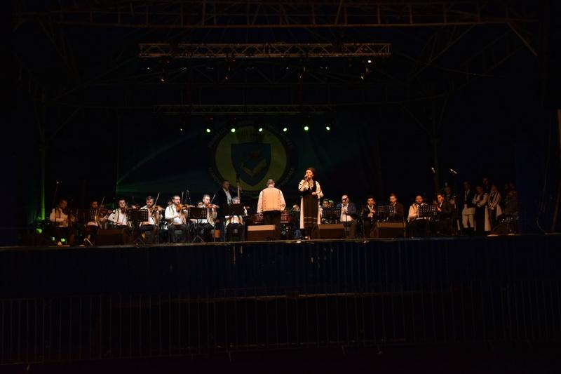 Vizualizati imaginile din articolul: Simfonii de toamnă... târgumureşeană