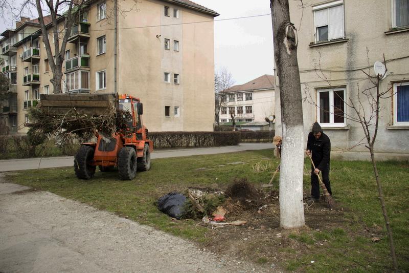 Vizualizati imaginile din articolul: Módosul az őszi nagytakarítás programja