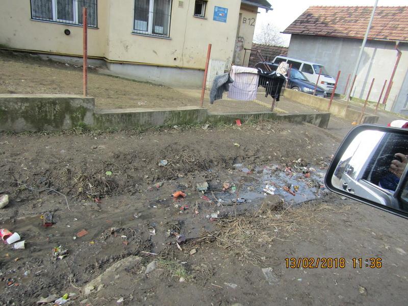 Vizualizati imaginile din articolul: Deşeurile din Valea Rece au fost ridicate!