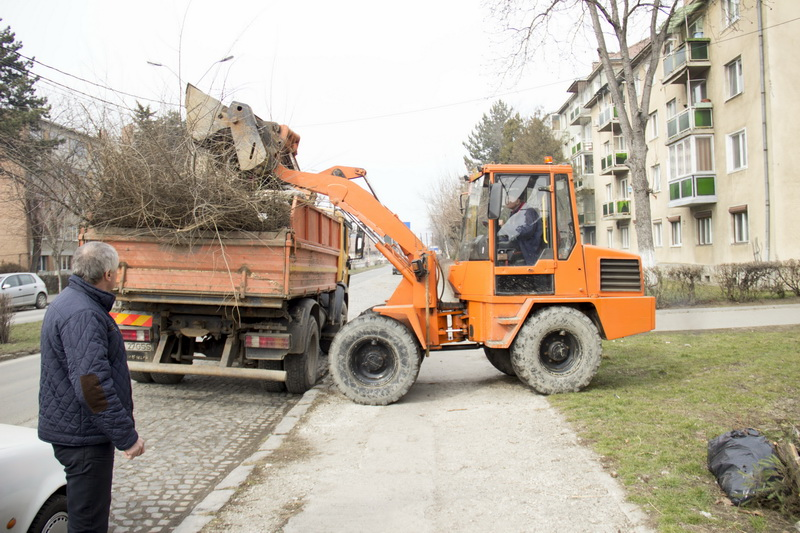 Vizualizati imaginile din articolul: Utcahigiénizálási tevékenységek Marosvásárhelyen