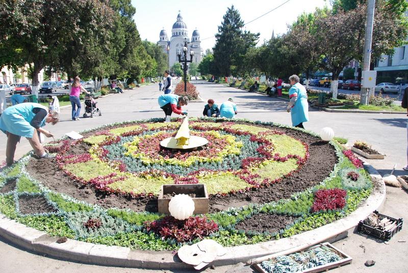 Vizualizati imaginile din articolul: Dragi târgumureşeni, vă aşteptăm la Ceasul cu flori!