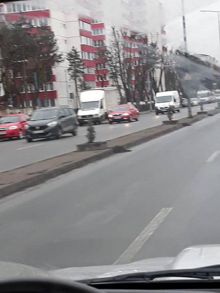 Vizualizati imaginile din articolul: Marosvásárhely Polgármesteri Hivatala megtakarítja az utcákat a tavaszra