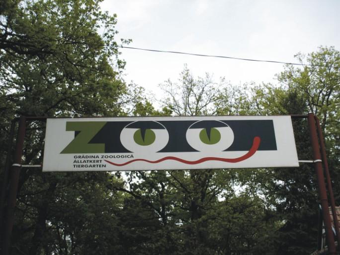 Vizualizati imaginile din articolul: 6.300 de vizitatori în acest sfârşit de săptămână la Grădina Zoologică