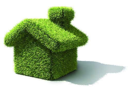"""Vizualizati imaginile din articolul: Undă verde la """"Casa verde""""!"""