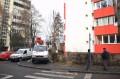 Continuă acţiunile de toaletare în municipiul Tîrgu Mureş