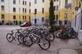 Primăria municipiului Tîrgu Mureş manifestă interes crescut pentru promovarea sportului pe bicicletă