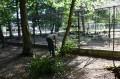 Grădina Zoo aşteaptă… vizitatori!