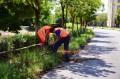 Parapeţi de protecţie noi de-a lungul turbinei de apă din cartierul Aleea Carpaţi