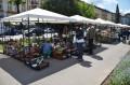 Marosvásárhely Polgármesteri Hivatala eladásra kínál virágokat a tavaszi ünnepek alkalmából