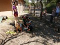Egyedülálló élmény a marosvásárhelyi gyermekonkológiára beutalt kicsiknek: virtuális túra az állatkertben!